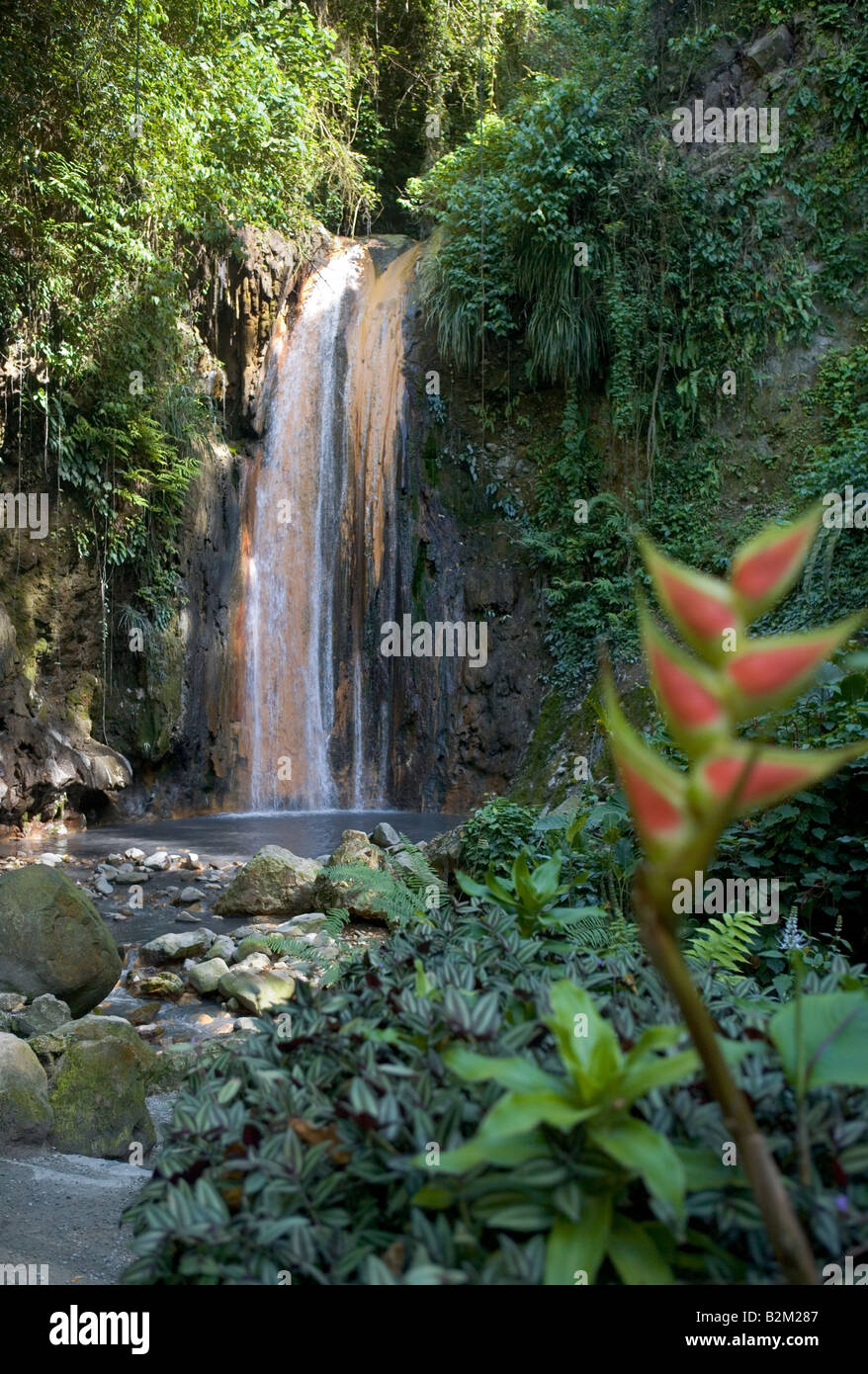 The hot water mineral waterfalls at the Botanical Gardens in St Lucia West Indies - Stock Image