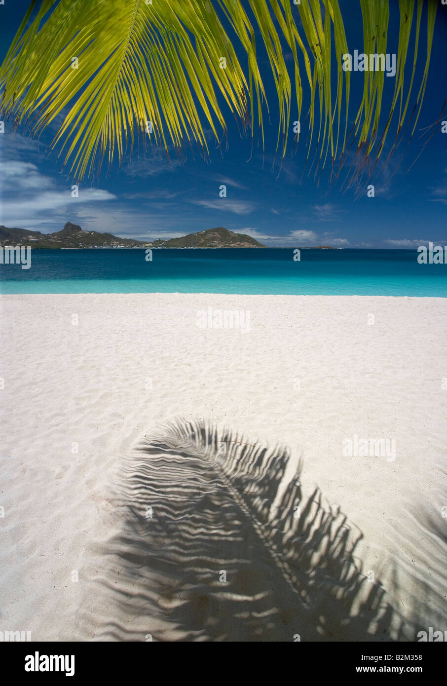 A palm frond and its shadow on a Caribbean beach this one on Palm Island St Vincent - Stock Image