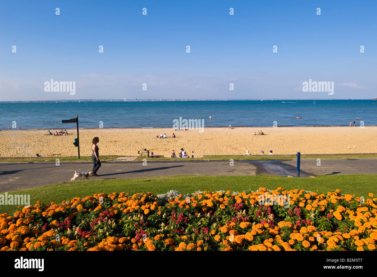 People enjoy hot summer day on beach in Appley Park overlooking English Channel Ryde Isle of Wight United Kingdom - Stock Image