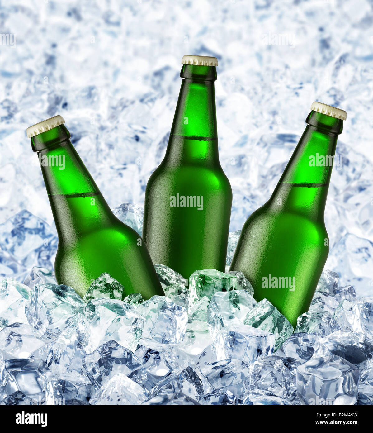 beer is in ice - Stock Image