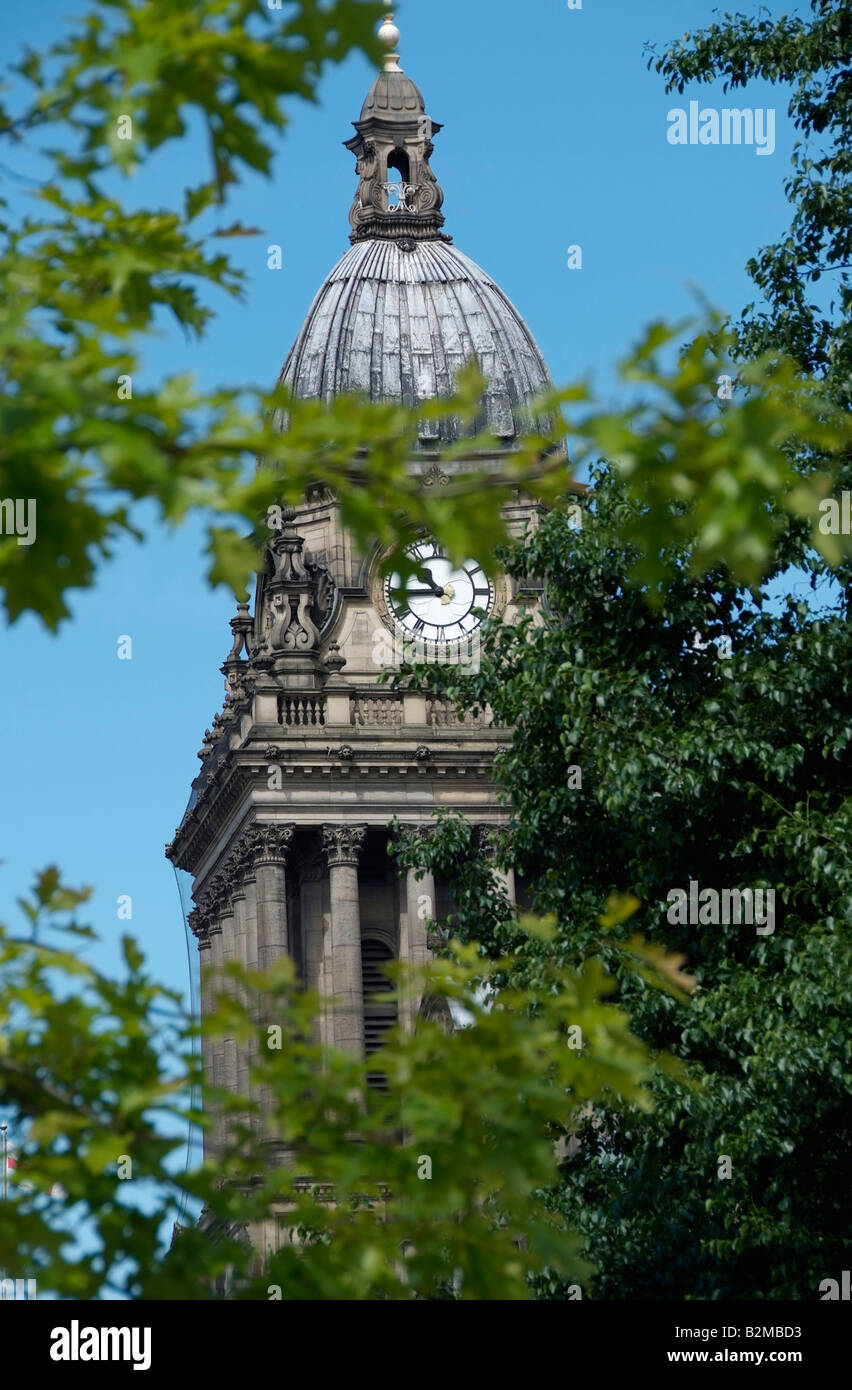 Leeds town hall clock tower seen beyond foliage - Stock Image