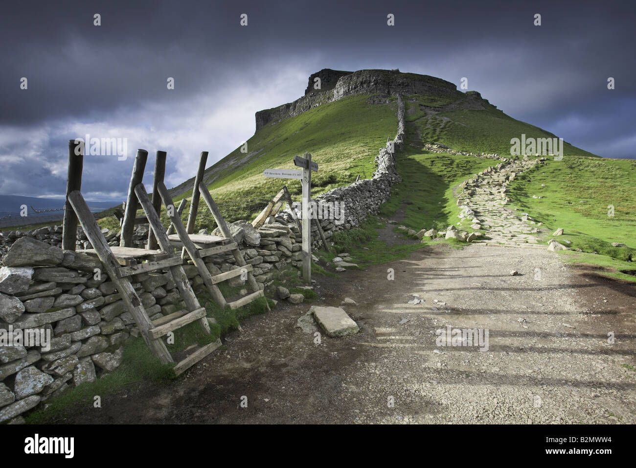 The Pennine Way footpath and distinctive peak of Pen-Y-Ghent, Ribblesdale, Yorkshire Dales, UK - Stock Image