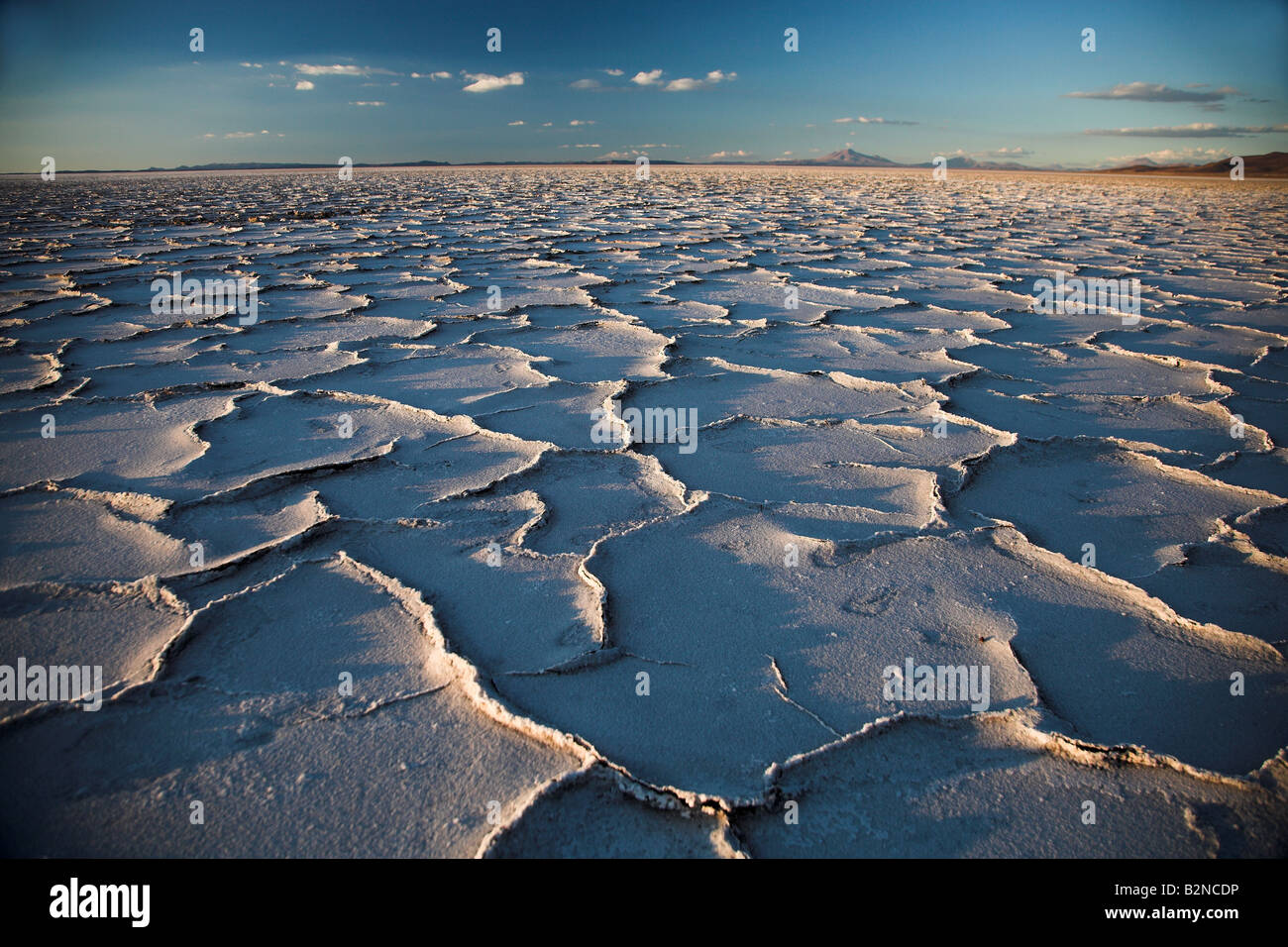 Cracked earth surface at sunrise in the Salar de Uyuni salt flats in Bolivia. - Stock Image