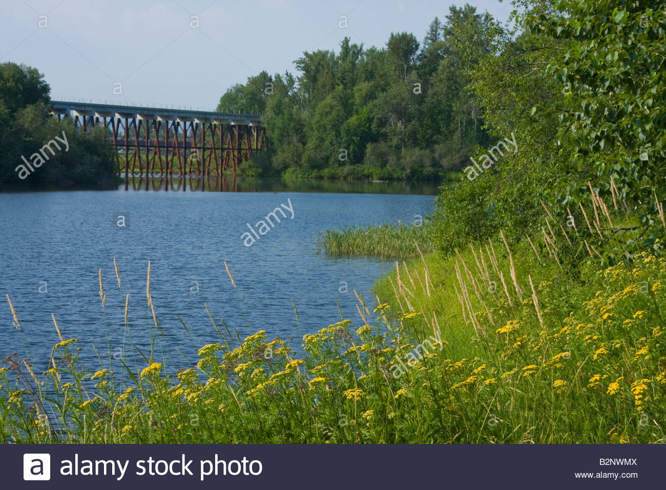 Railroad trestle over Sand Creek North of Sandpoint Idaho - Stock Image