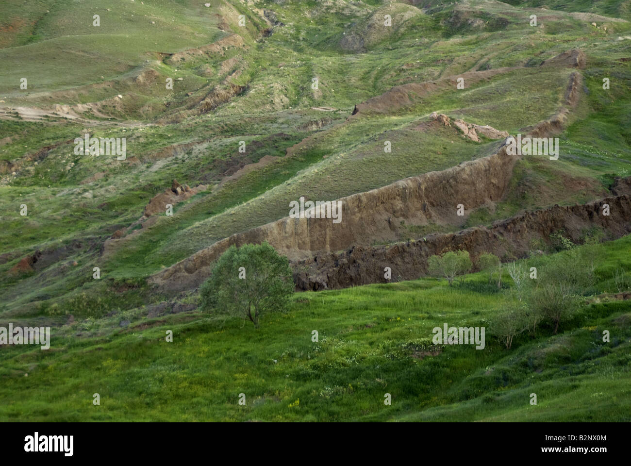 Noah's Ark, reputed final resting site with boat shaped rock formation at Noah's Ark National Park - Stock Image