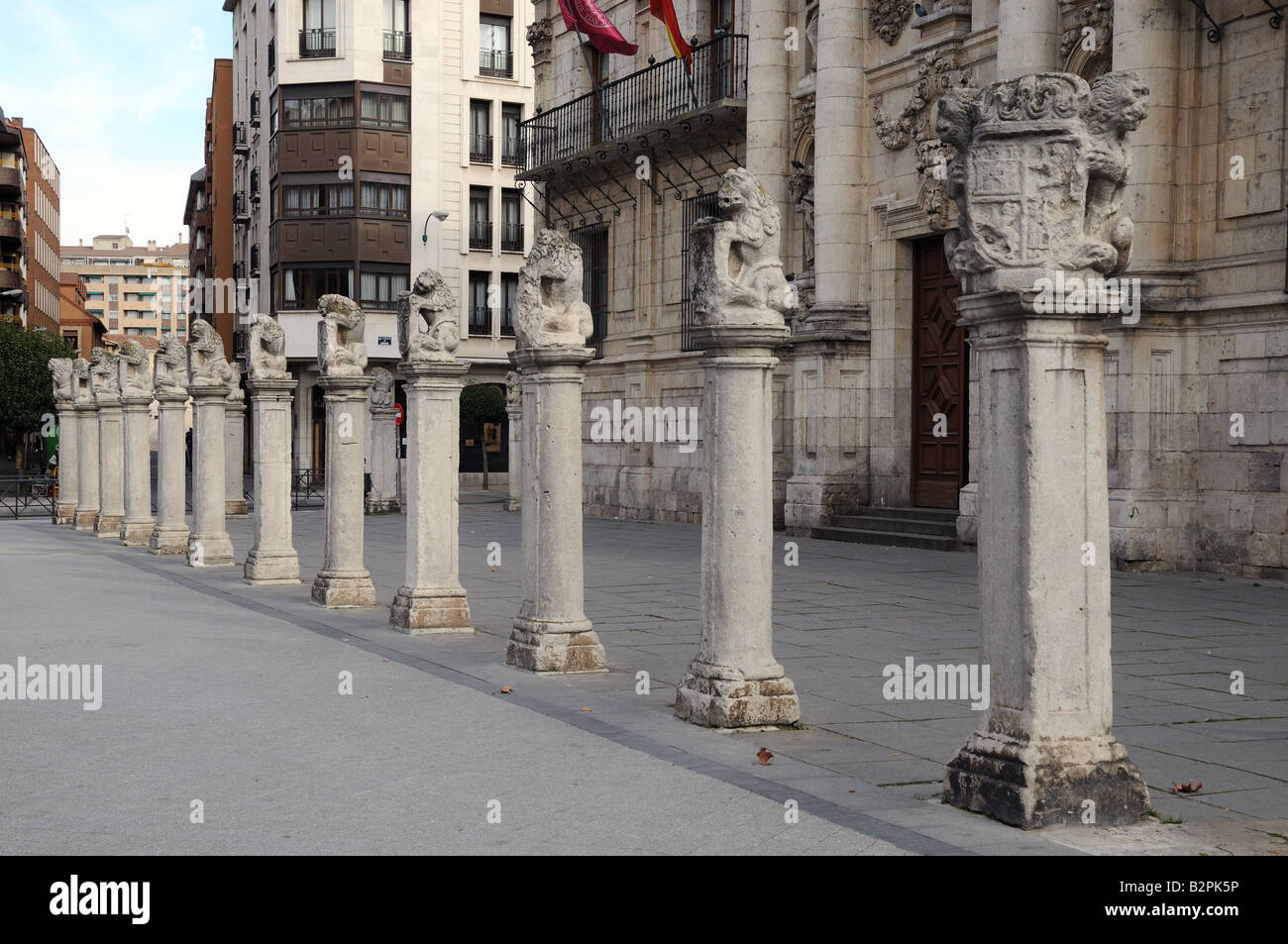 A line of pedestals with stone carved lions in front of the baroque Universidad University Valladolid Spain - Stock Image