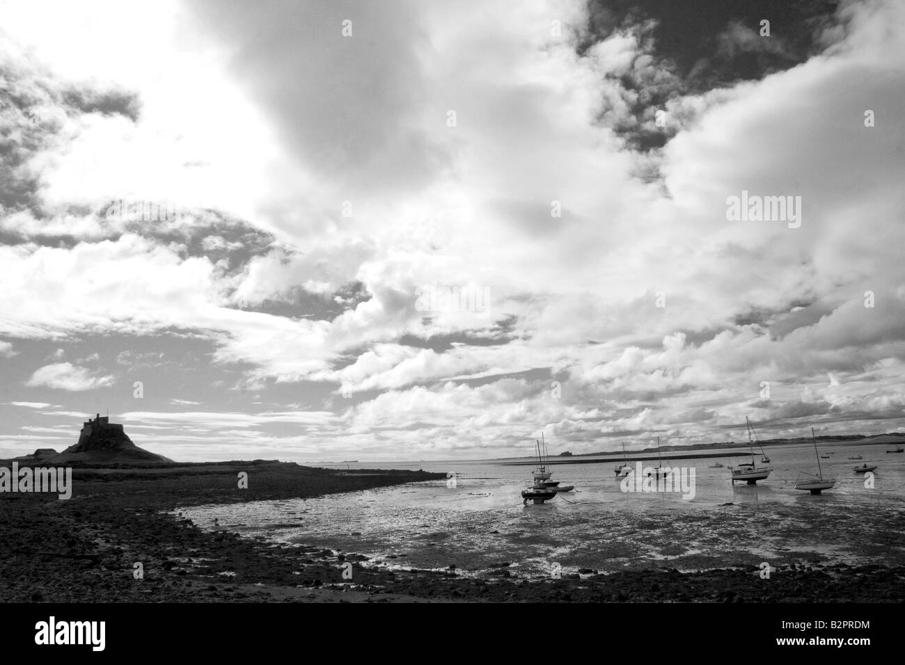 Lindisfarne at low tide - Stock Image