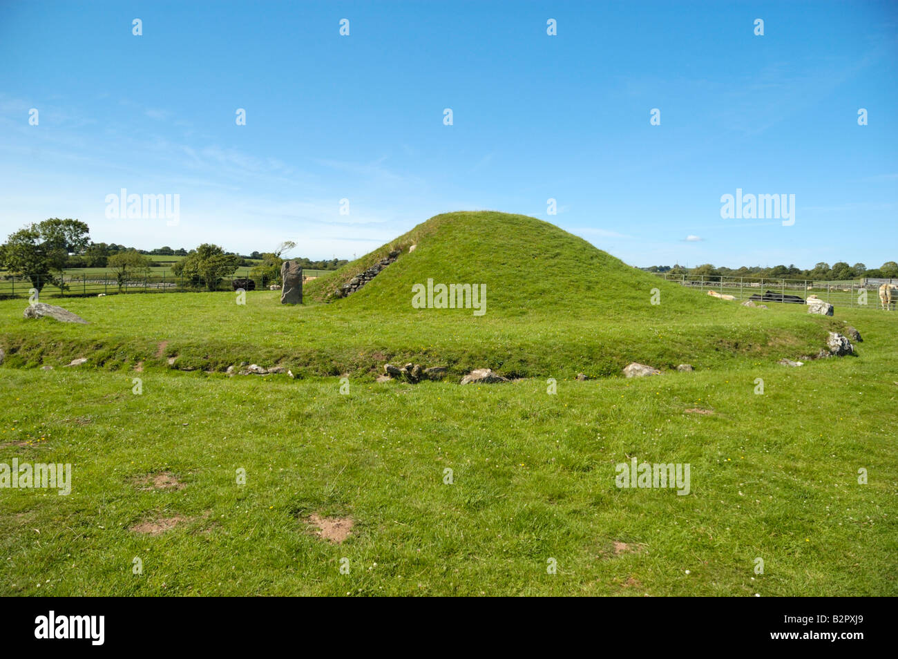 The ancient burial mound of Bryn Celli Ddu Anglesey Wales UK Stock Photo