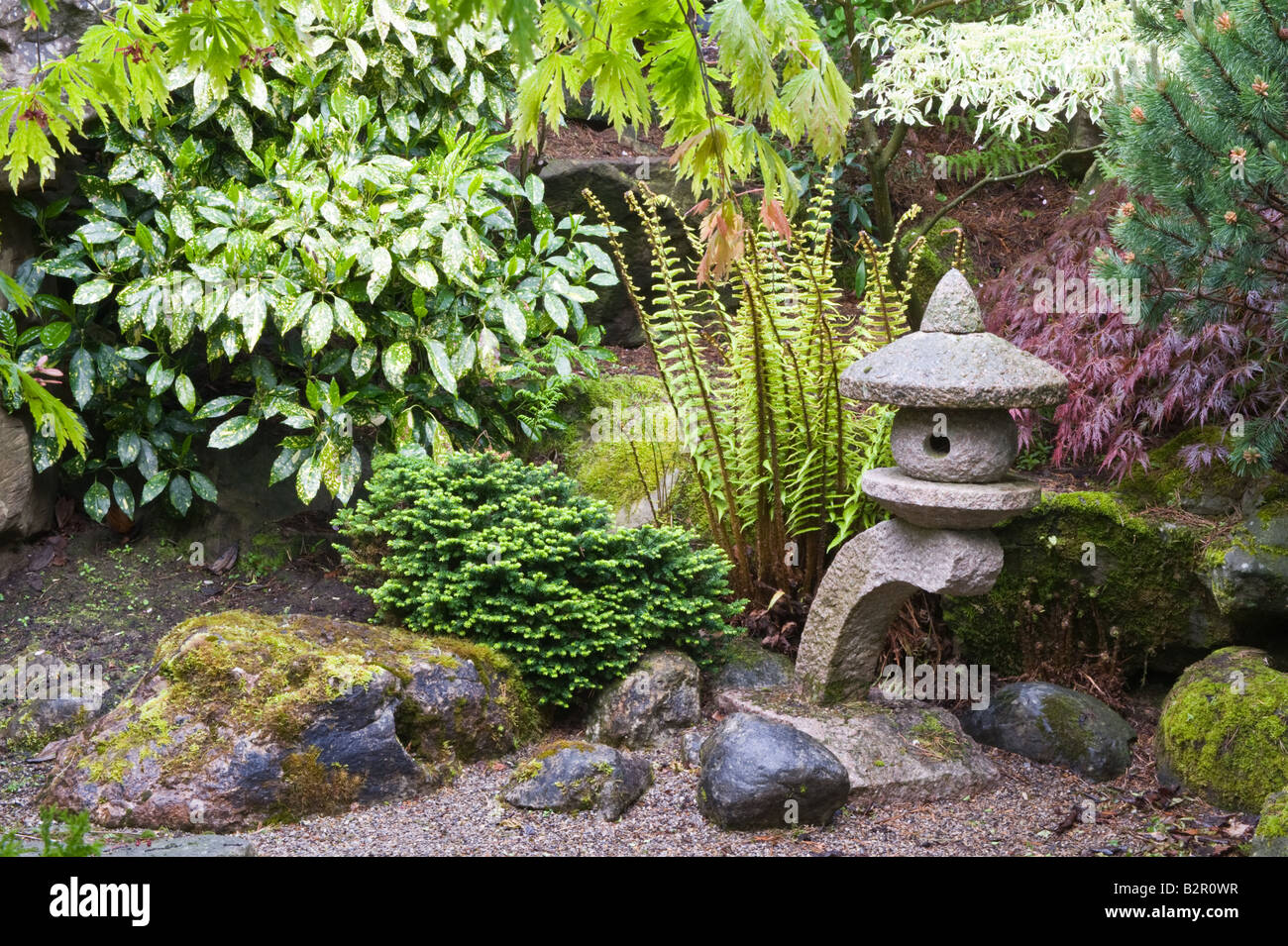 Rock Garden With Fern Japanese Lantern, Shrubs And Trees Design By Bahaa  Seedhom North Yorkshire