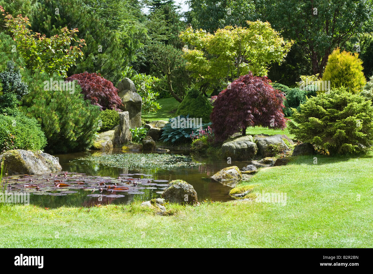 Grit-stone rocks bushes trees and pond in garden design by Bahaa Seedhom North Yorkshire England May - Stock Image