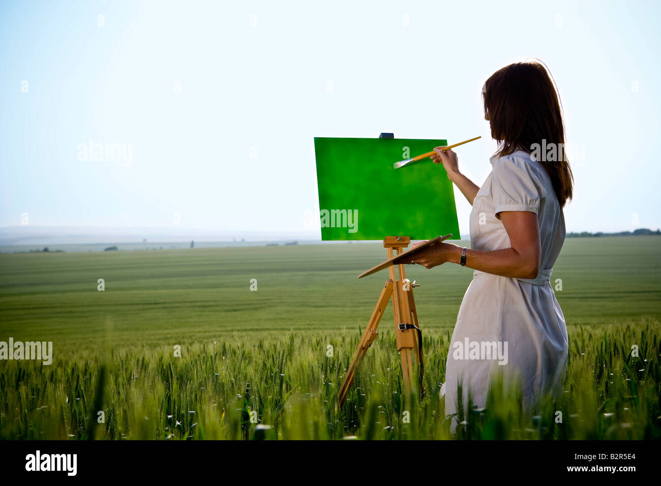 Woman painting in wheat-field, rear - Stock Image