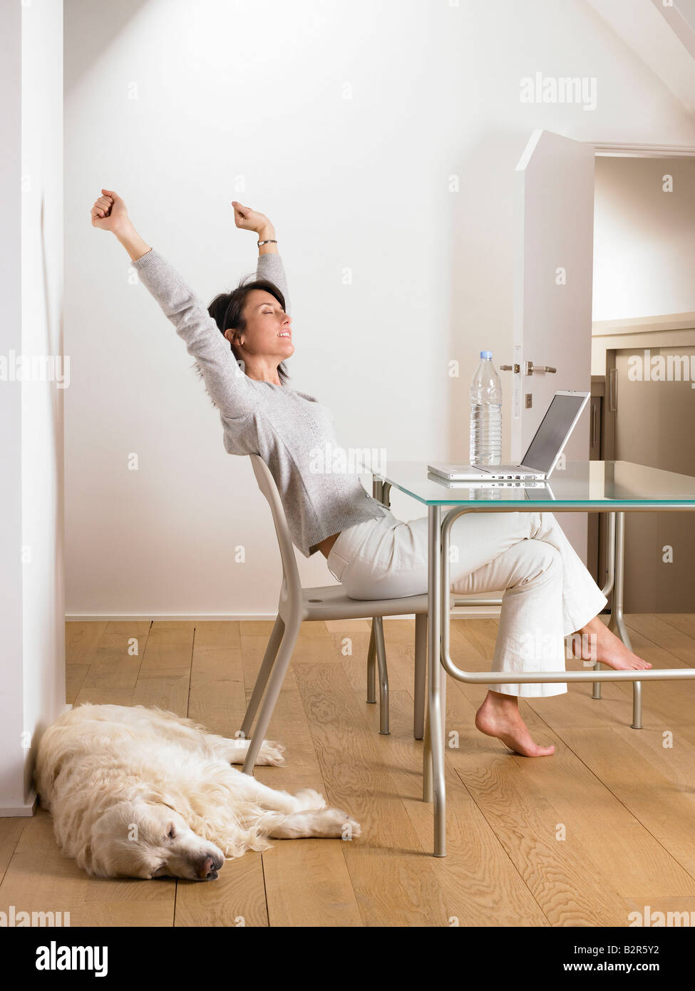 Woman at her desk, dog sleeping - Stock Image