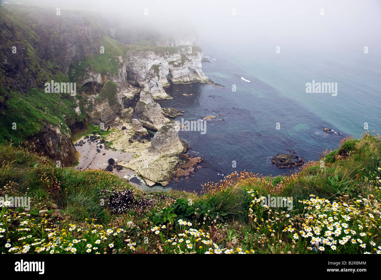 Sea Mist at White Rocks on the Antrim Coast near Portrush County Antrim Northern Ireland UK - Stock Image