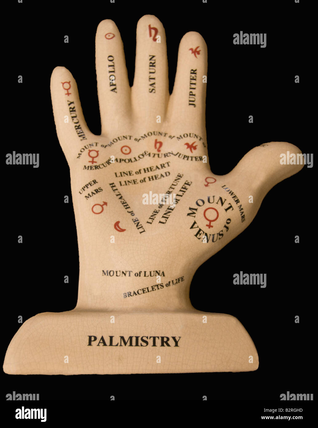 Model of a hand designating the main points of palmistry Stock Photo