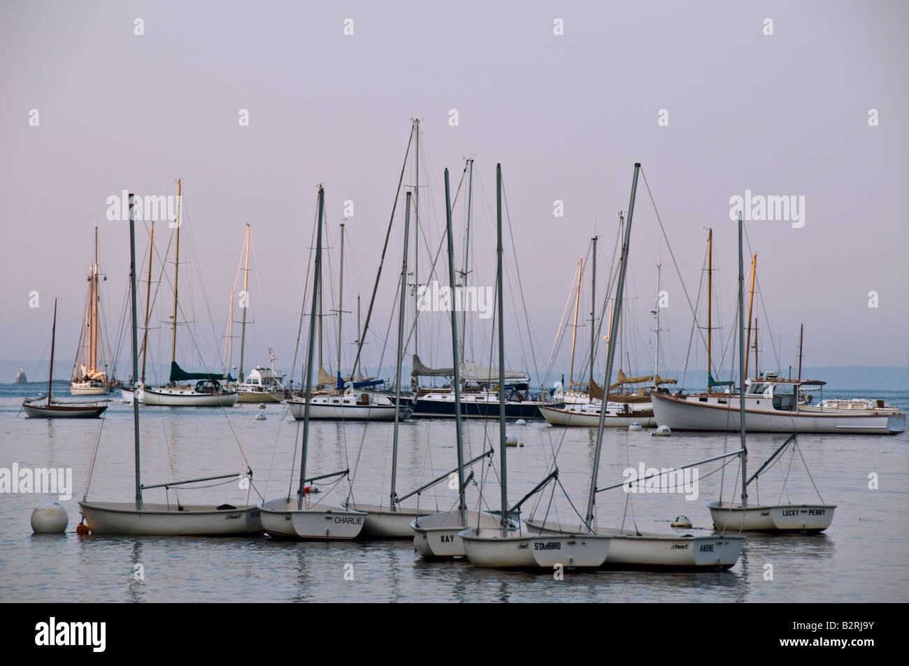 Clusters of sailboats in a harbor at dawn - Stock Image