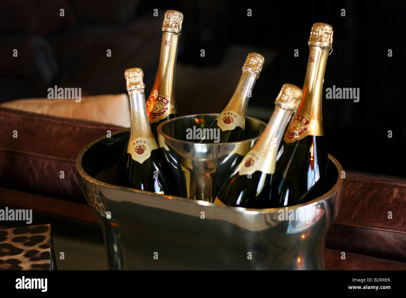 Champaign and Ice Bucket - Stock Image