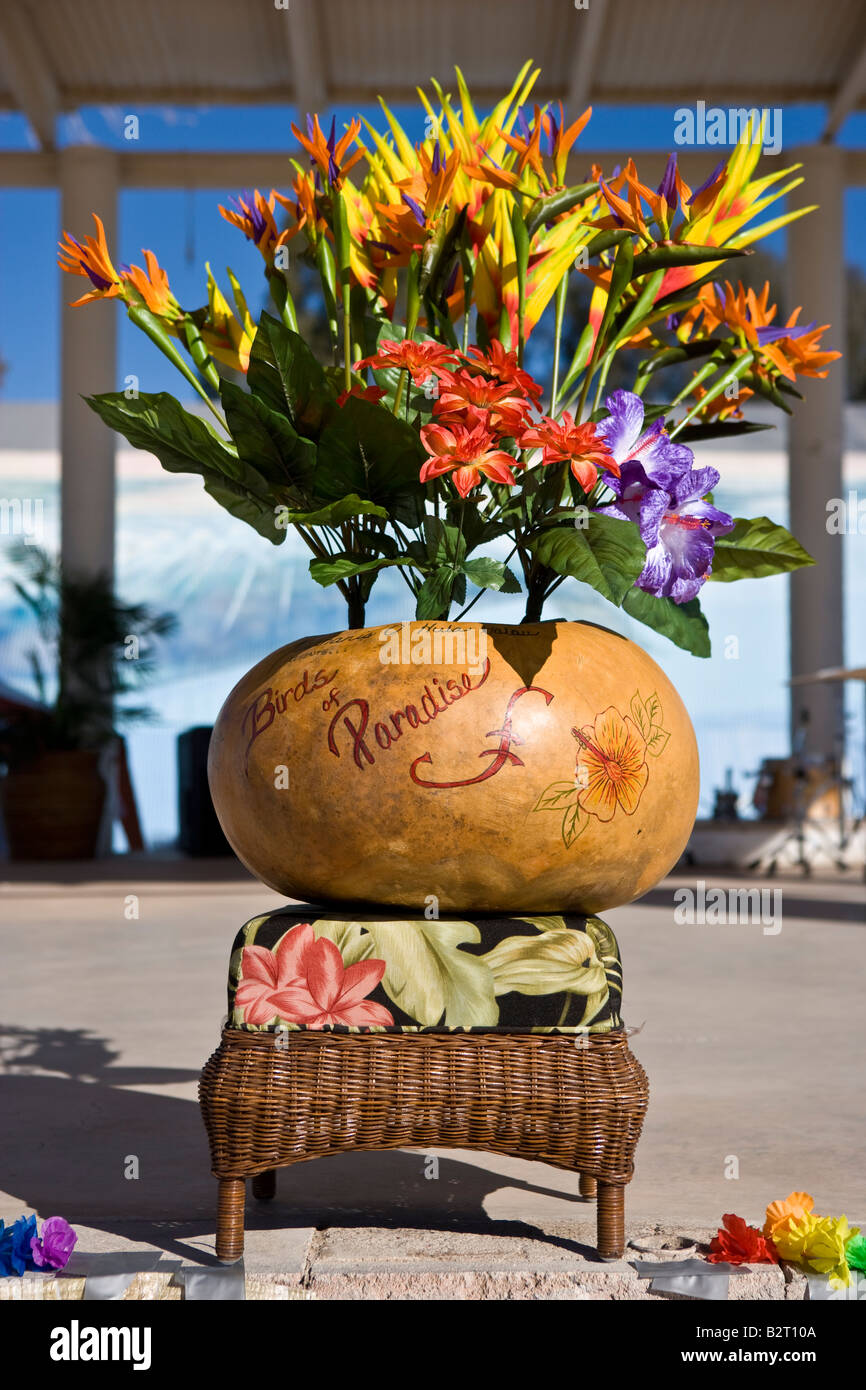 Display of a very large gourd and colourful bird of Paradise flowers at the Gourd Show at Wuertz Farm Arizona USA - Stock Image