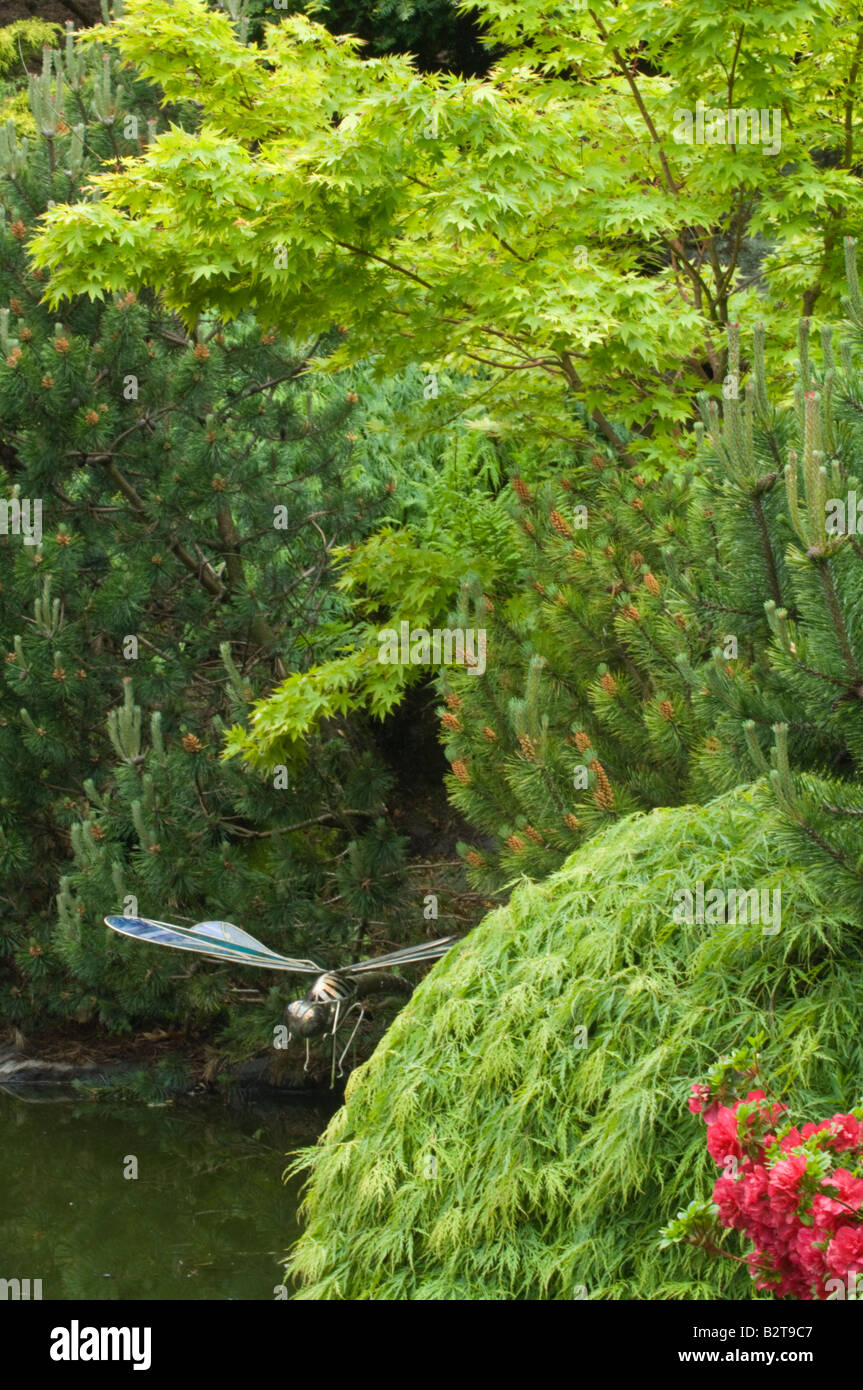 Garden with pond, sculpture, shrubs and trees designed by Bahaa Seedhom North Yorkshire England UK Europe May - Stock Image