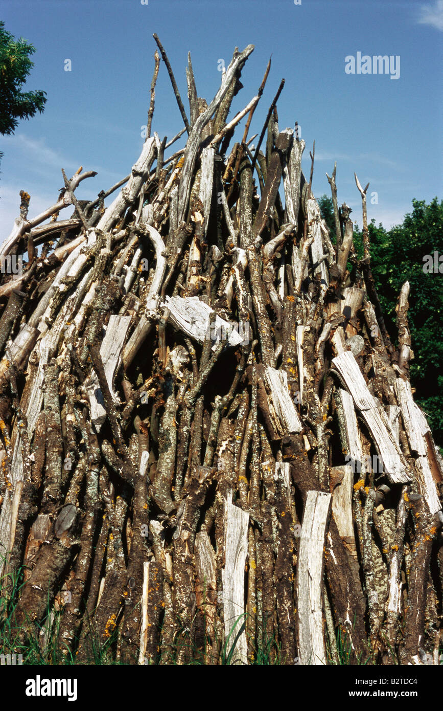 Piled timber, low angle view - Stock Image