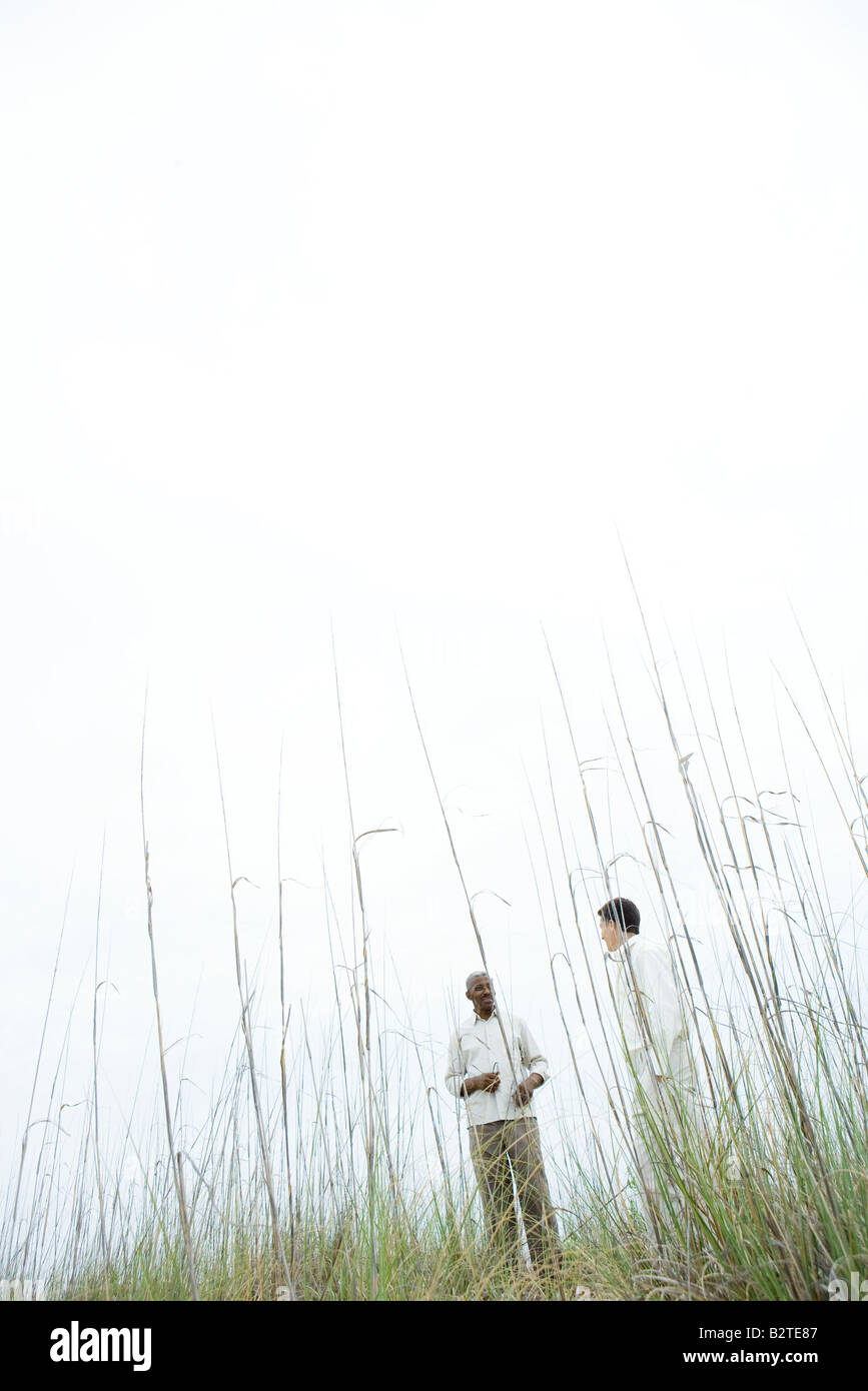 Two men standing apart outdoors, low angle view through tall grass - Stock Image