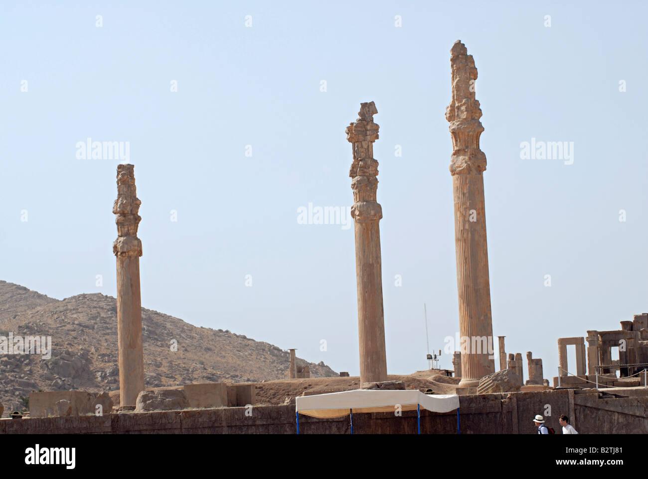 Iran Persepolis Remains Of Pillars Of The Apadana Palace Stock Photo Alamy