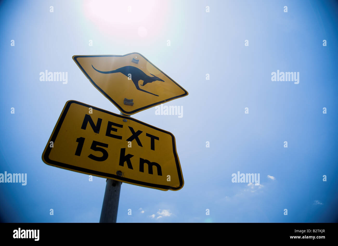 Close up of Kangaroo sign on the east coast of Autralia, against a bright blue sky. - Stock Image
