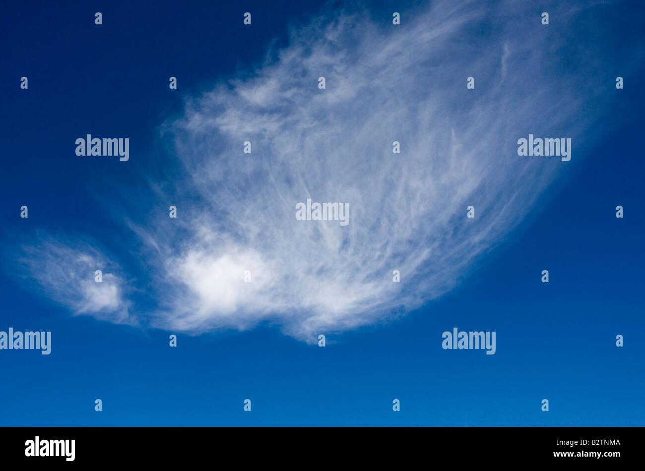 Wispy cloud and blue sky Mount Rainier National Park Washington WA - Stock Image