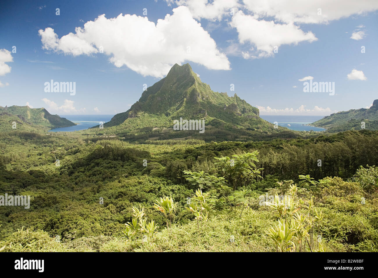 Moorea society islands - Stock Image