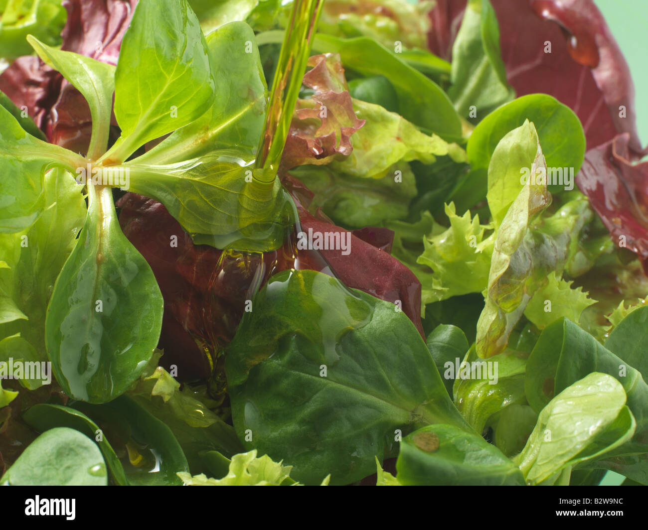 Olive oil being poured onto salad - Stock Image