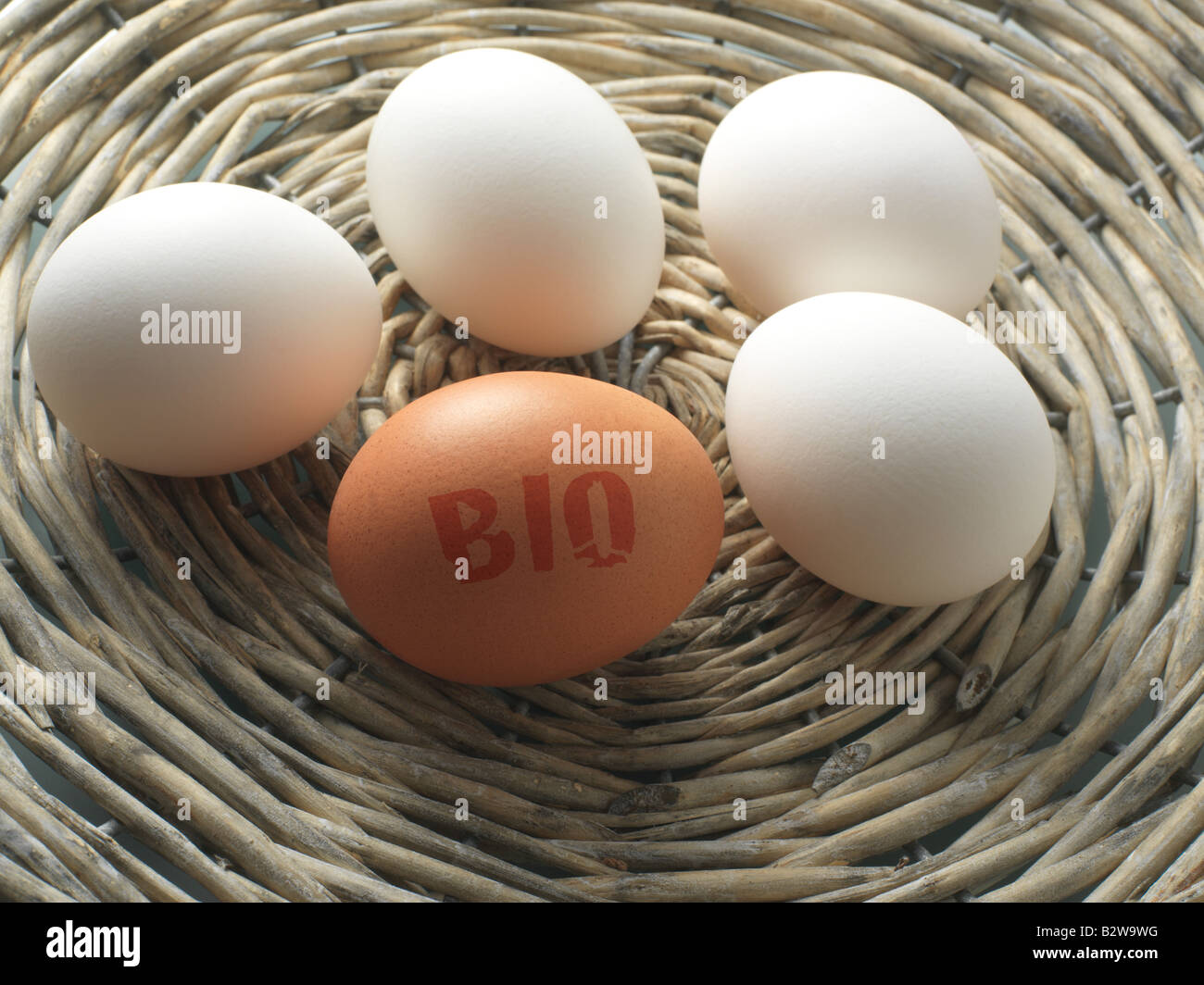 Bio egg - Stock Image