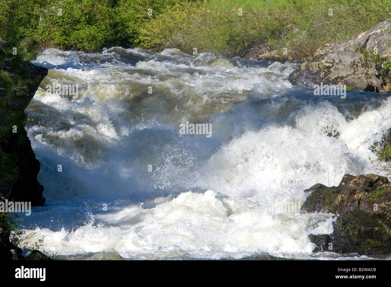 The Little Salmon River in Adams County Idaho - Stock Image