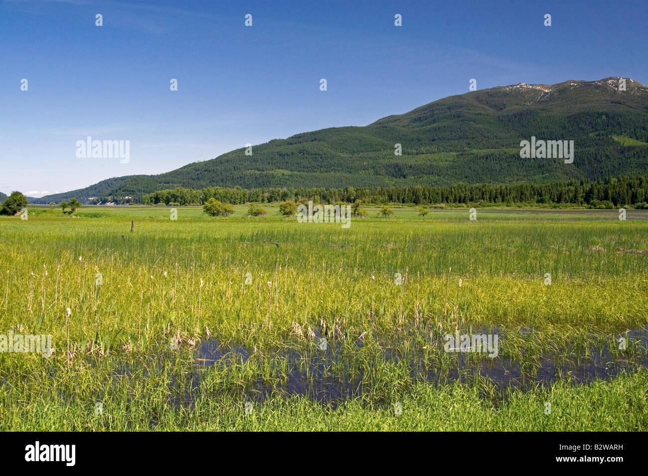 Swan River National Wildlife Refuge near Kalispell Montana - Stock Image