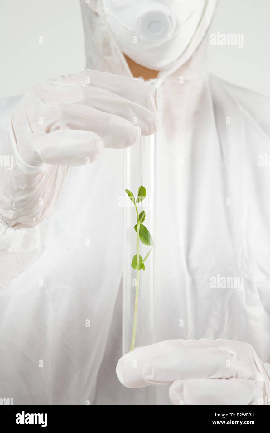 Scientist with plant in test tube Stock Photo