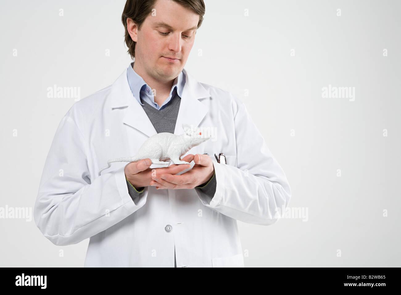 Scientist holding rat Stock Photo