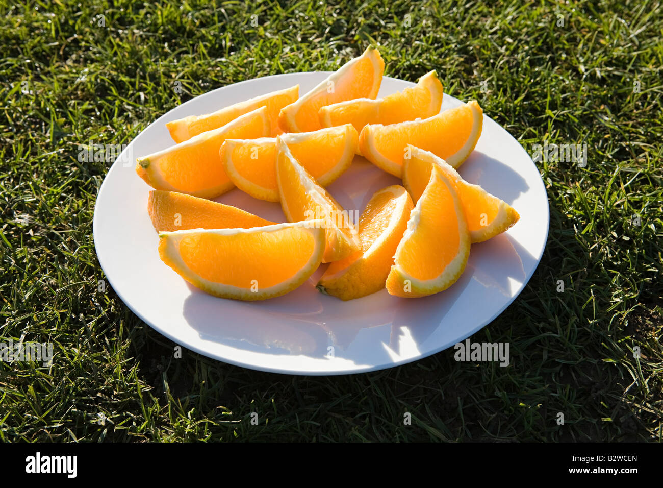 Slices of orange on a plate - Stock Image
