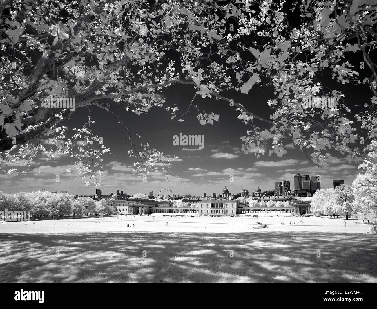 Greenwich Park London England infra red black and white - Stock Image