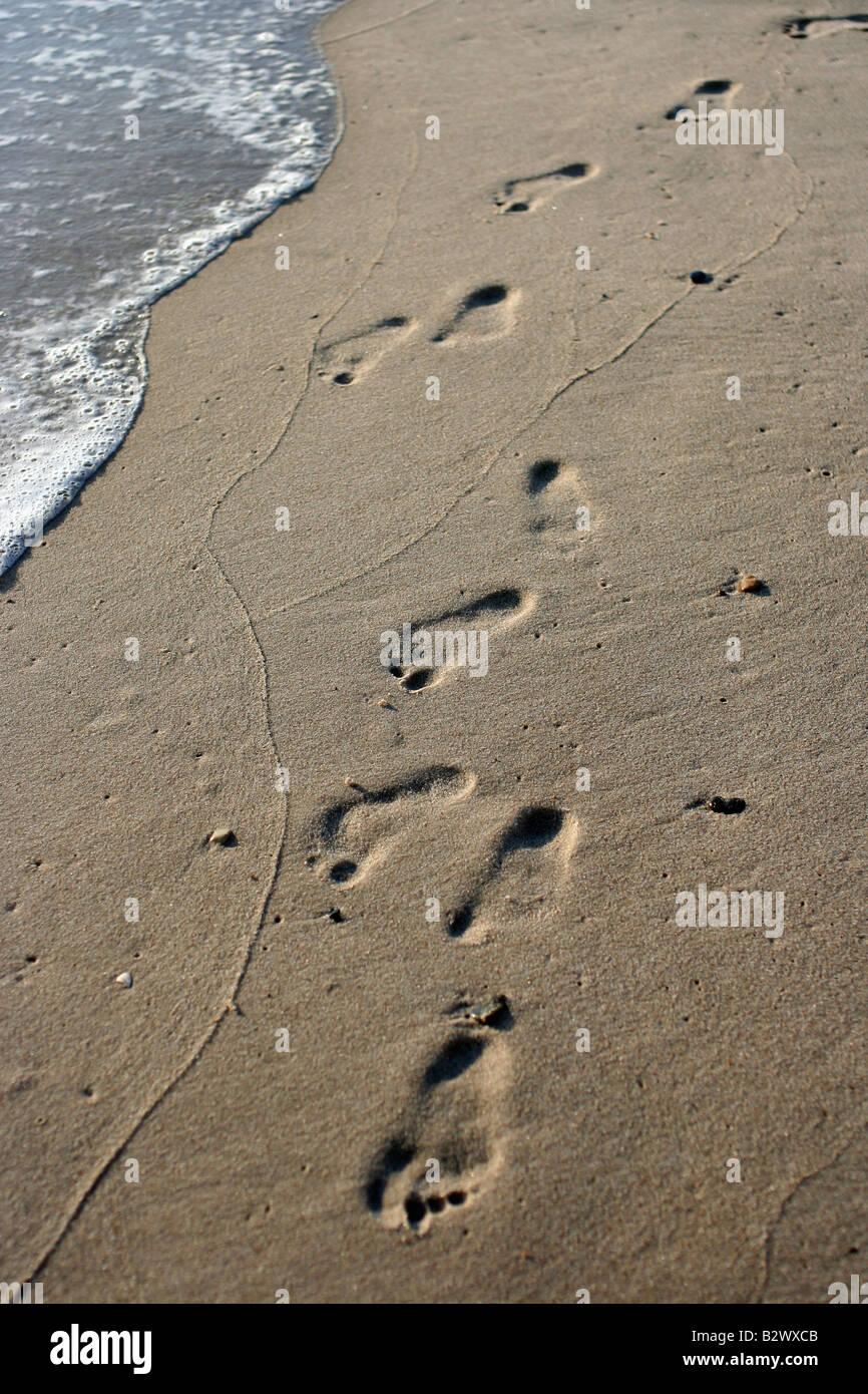 Footprints on wet sand - Stock Image