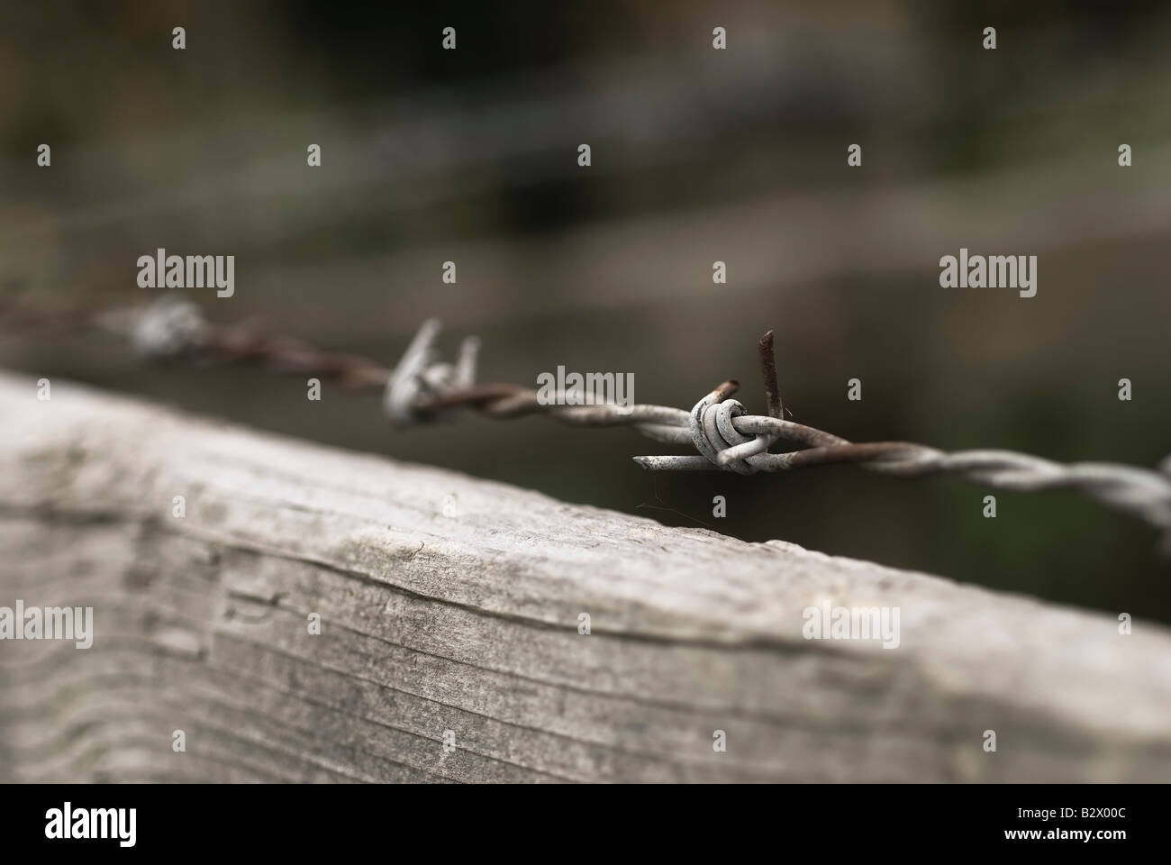A barbed wire topped fence - Stock Image