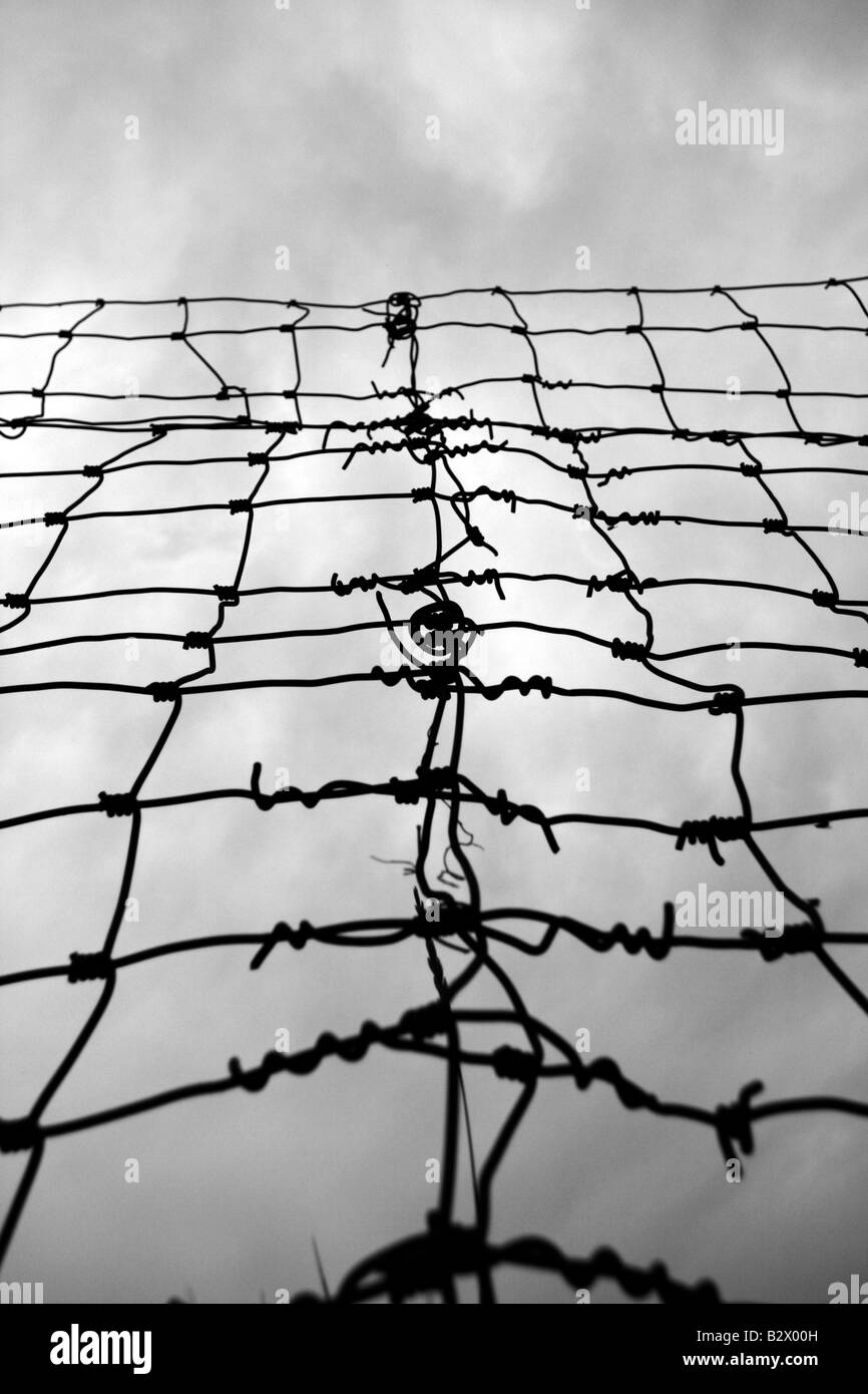 Wire Zoo Fence Stock Photos & Wire Zoo Fence Stock Images - Alamy