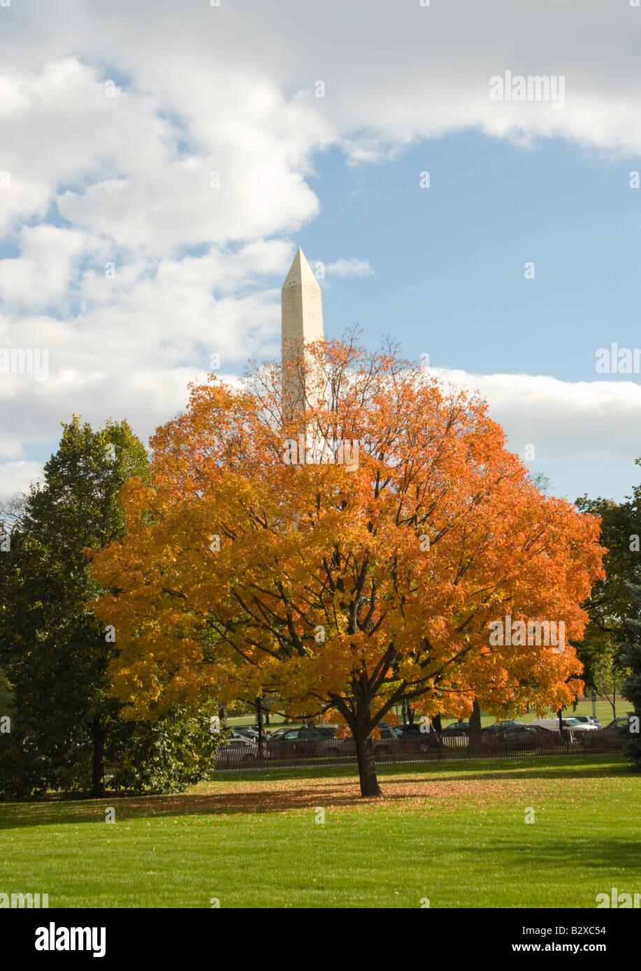 Washington DC USA The Washington Monument and Fall Color near the White House Photo copyright Lee Foster Photo 2 - Stock Image