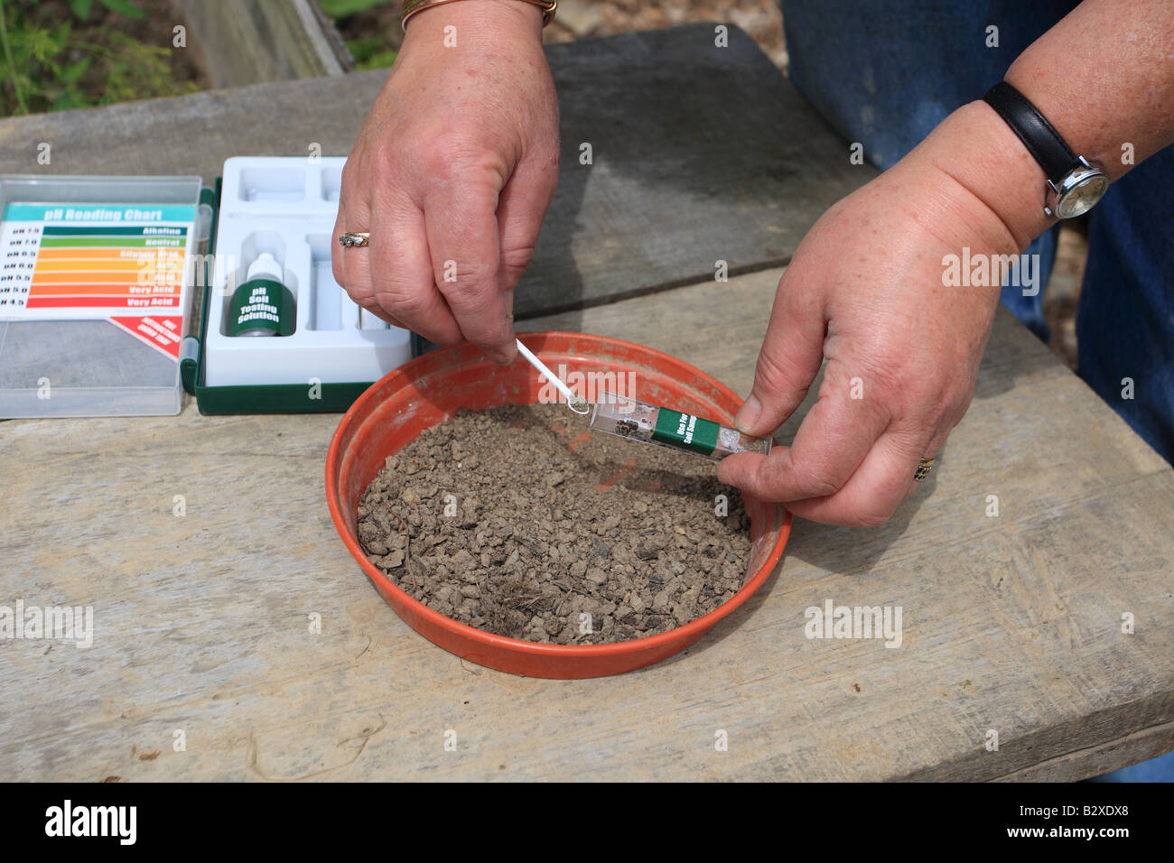 SOILTESTING pH STEP 1 USING A SMALL SPOON ADD DRY FINE SOIL TO THE TEST TUBE - Stock Image