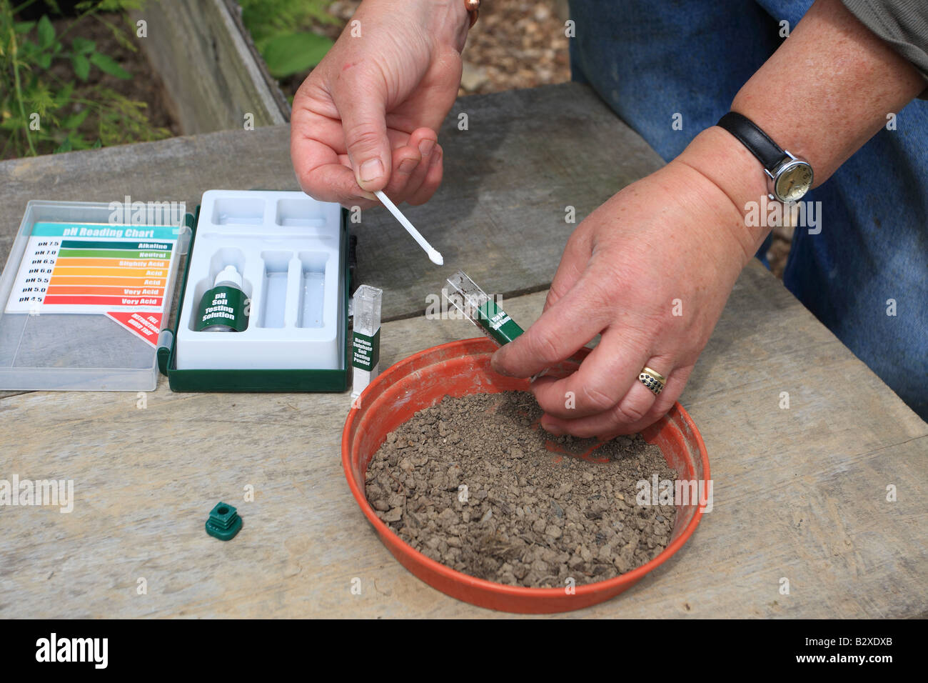 SOILTESTING pH STEP 2 ADDING A SPOONFULL OF BARIUM SULPHATE TO THE TUBE WILL FLOCULATE THE SOIL PARTICLES AND ASSIST - Stock Image