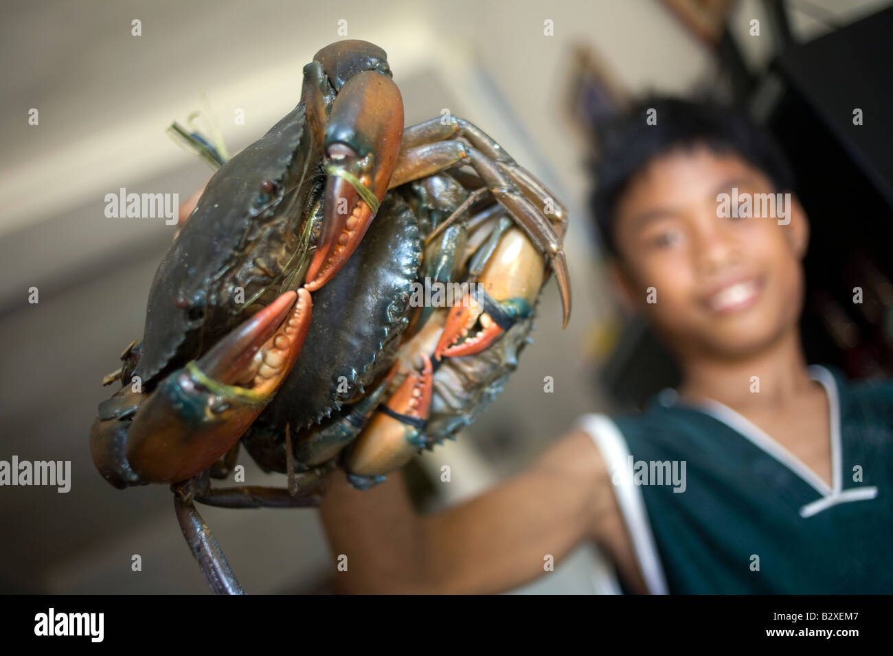 A Filipino boy clutches a pair of crabs in Mansalay, Oriental Mindoro, Philippines. - Stock Image