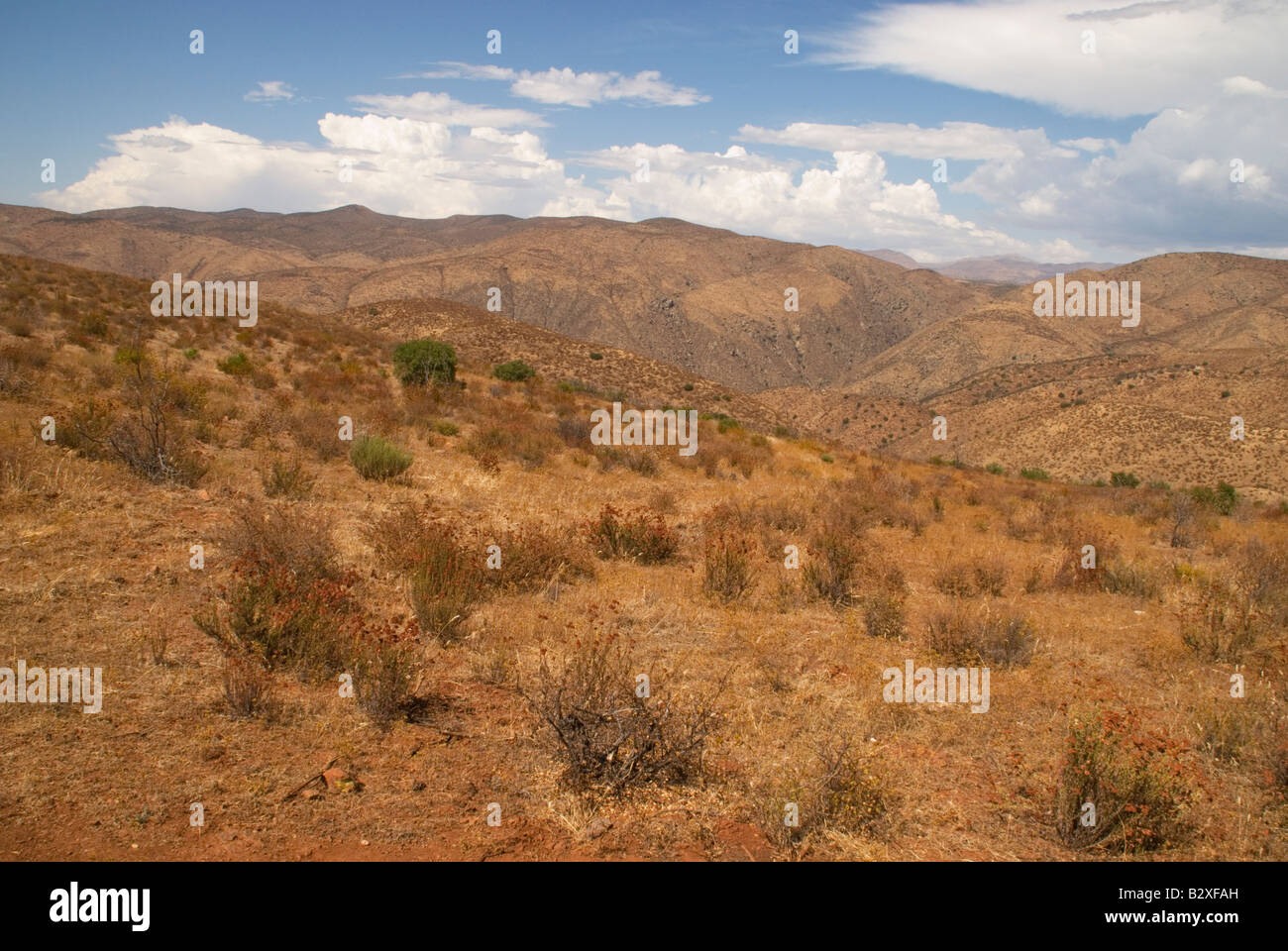 rolling hills in the desert of Baja California Mexico. Attractive southwest colors paint the landscape - Stock Image