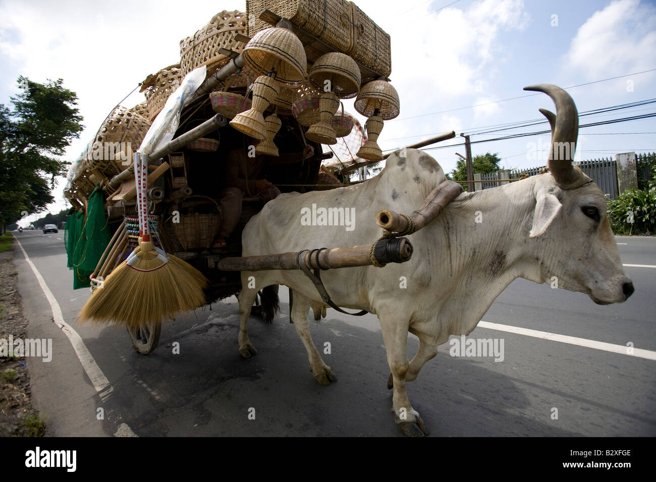 An ox pulls a cart loaded with a Filipino's wares to market along a highway leading to Tagaytay City, Philippines. - Stock Image