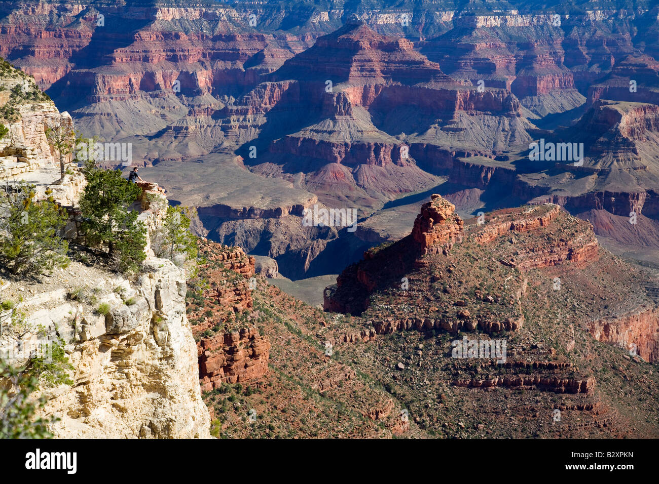 Angel Point of the Grand Canyon- morning 10 - Stock Image