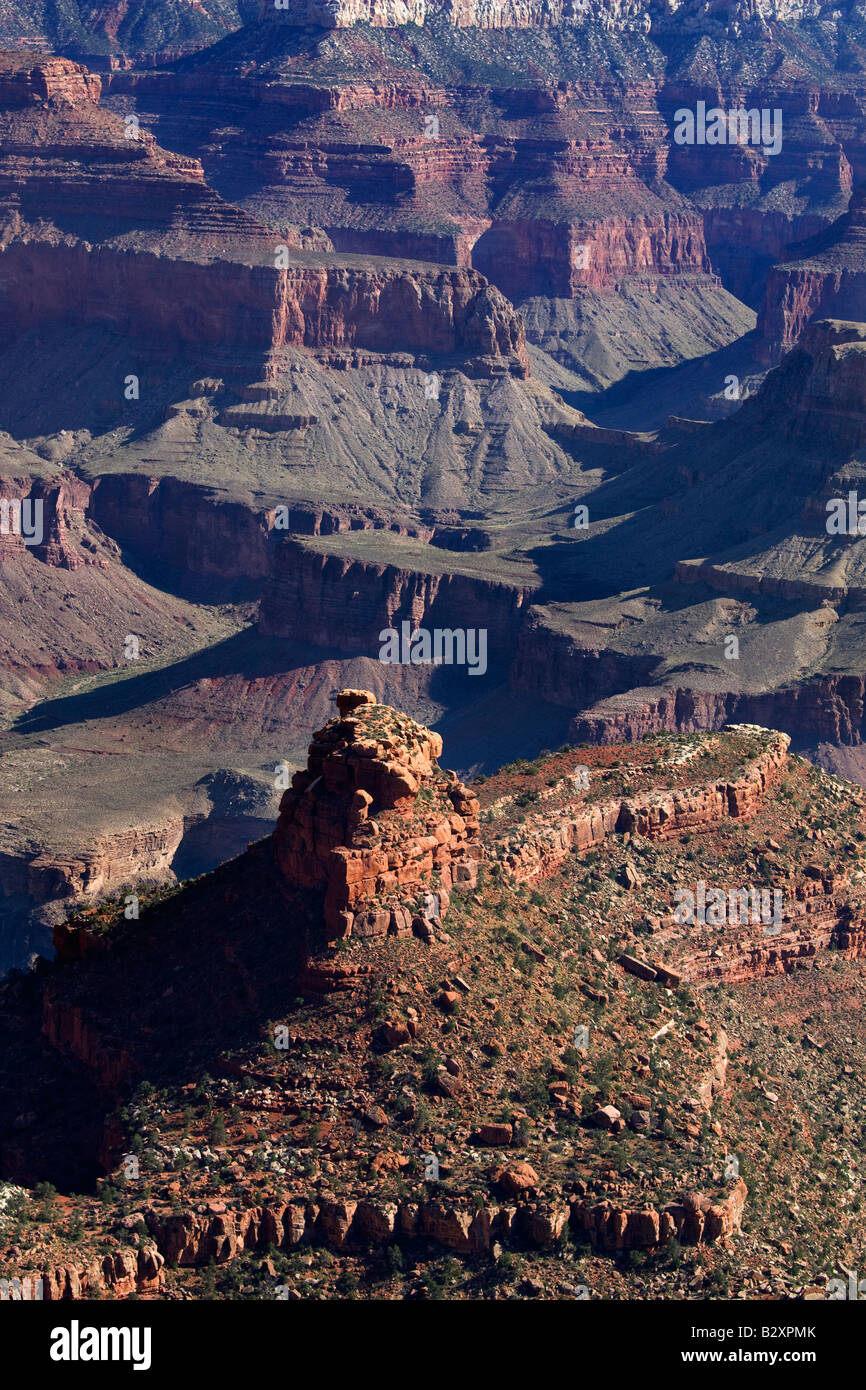 Angel Point of the Grand Canyon- morning 8 - Stock Image