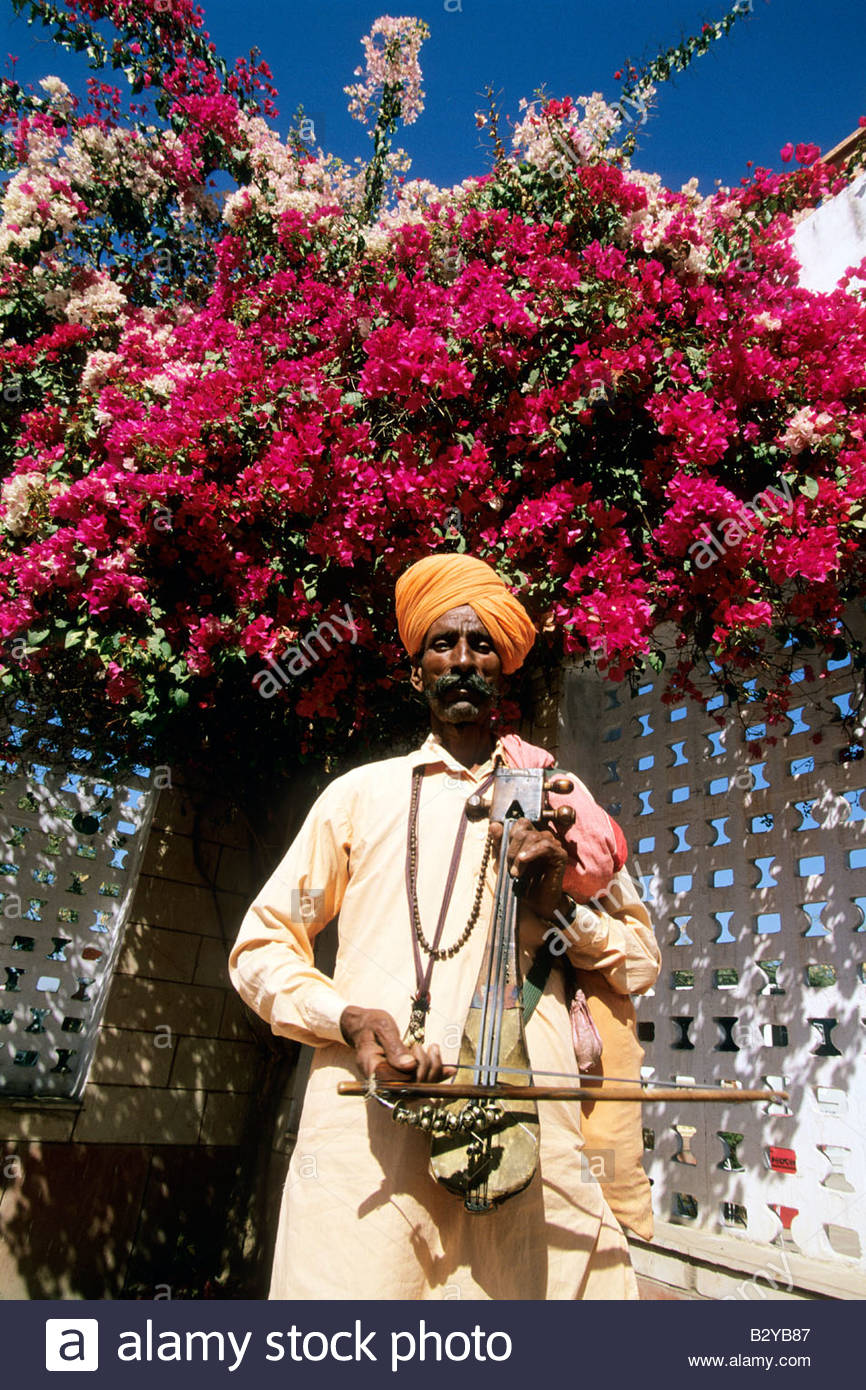 asia, india, rajasthan, stringed instrument player - Stock Image