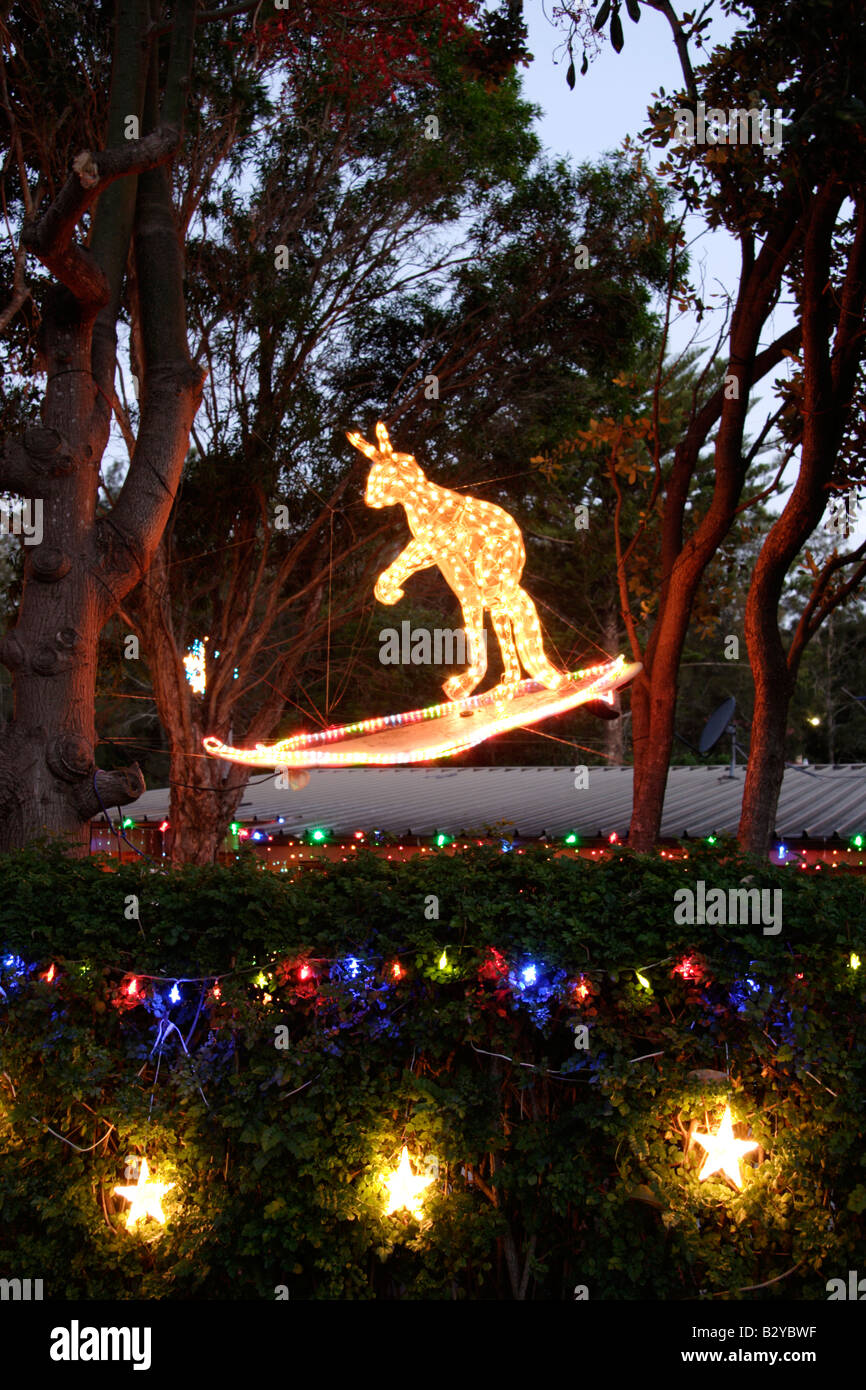 Christmas Kangaroo Lights.Surfing Kangaroo Christmas In The Suburbs Sydney New South