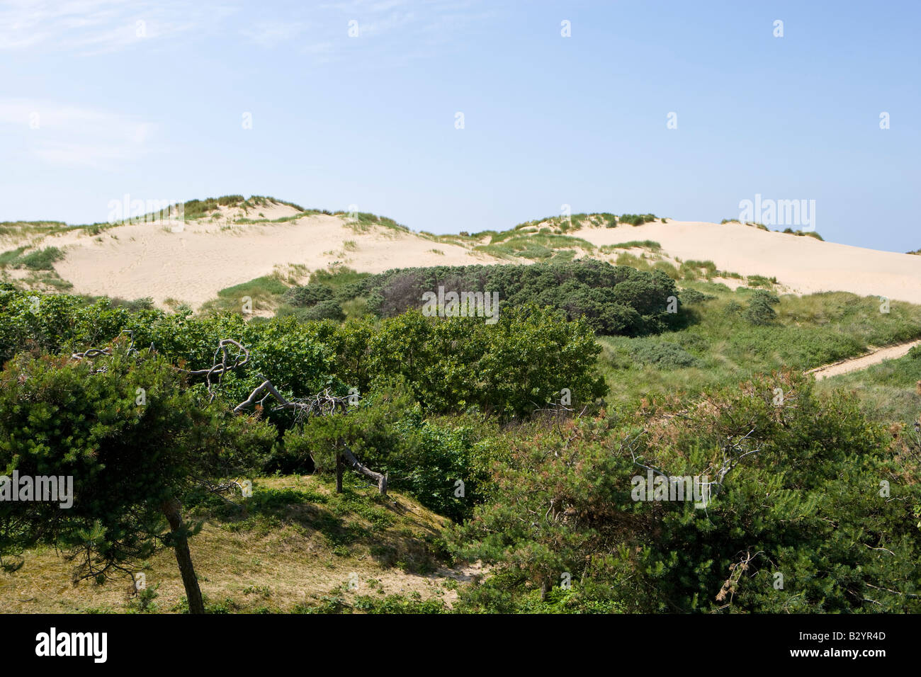 Large mobile dune system on north west coast of England. Formby - Stock Image